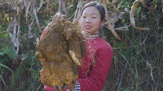 Chinese Food   Dioscorea opposita and Preserved spareribs農村的淮山藥個頭都特別大,隨便拿一點來做兩個家常菜,都很好吃