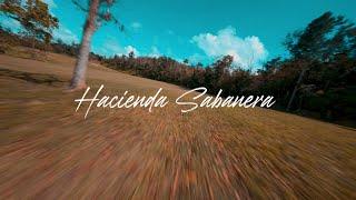Hacienda Sabanera , Cidra , Puerto Rico , Fpv Freestyle