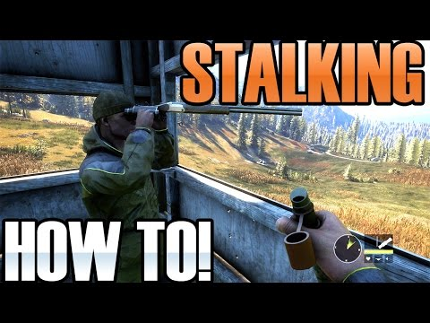The Hunter Call of the wild - Art of Stalking and how to do it.