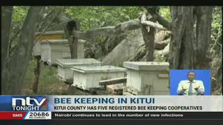 The county government of Kitui is taking steps to bolster bee