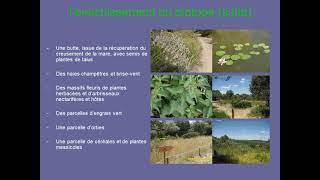 Jardin Garrigue Et Papillons - GABIAN