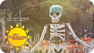 Tag der Toten in Mexiko: So wird der Tag zelebriert | SAT.1 Frühstücksfernsehen | TV