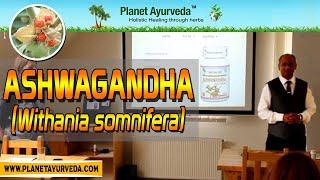 Ashwagandha (Withania somnifera)- Health Benefits, Properties & Uses | Ayur