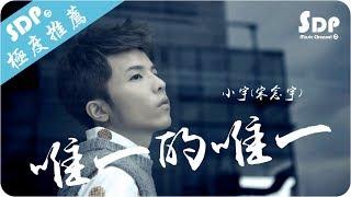 小宇(宋念宇) - 唯一的唯一「高音質 x 動態歌詞 Lyrics」♪ SDPMusic ♪