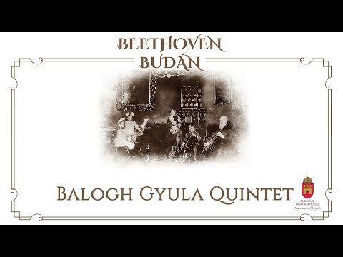 Házimuzsika - Balogh Gyula Quintet - video preview image