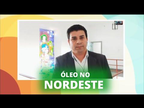 Óleo no Nordeste: deputados estão em Pernambuco acompanhando situação no litoral - 08/11/19