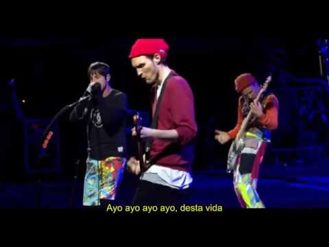 Red Hot Chili Peppers - Goodbye Angels Live (Legendado) (Debut)