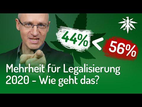 Mehrheit für Legalisierung 2020 - Wie geht das?