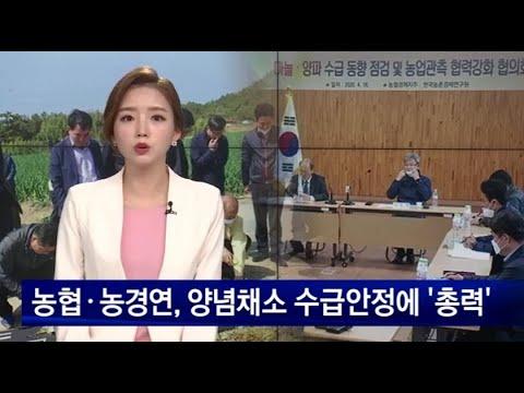 (NBS한국농업방송) 한국농촌경제연구원-농협, 농업관측 협력강화 협의회 개최 이미지