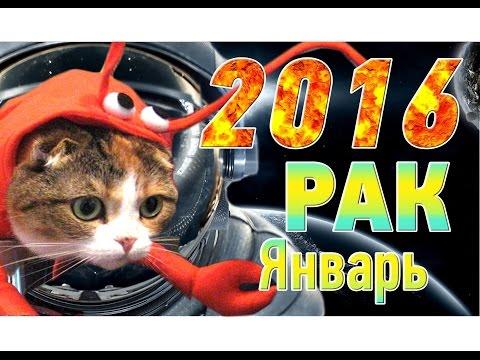 Скорпион гороскоп на 2016 мужчина