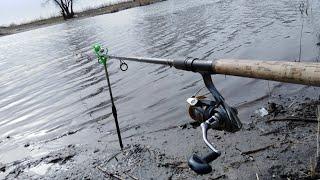 Ловля рыбы в ростовской области весной 2020 форум