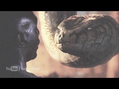 Anaconda killed Morris Chestnut | Anacondas (2004) Movie Scene | Anaconda Swallowed