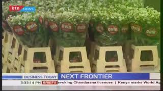 The journey of Kenyan flowers to Europe | Next Frontier