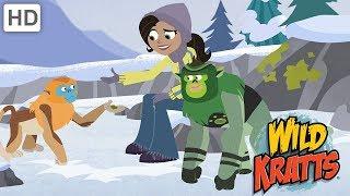 Wild Kratts - Wild Holiday Adventures