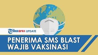 Pemerintah Kirim SMS Blast Mulai 31 Desember 2020, Penerima SMS Wajib Ikuti Vaksinasi Covid-19