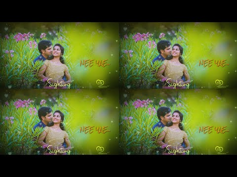 💕tamil whatsapp status video love songs new | Love whatsapp status video tamil | love| YR CREATIONS