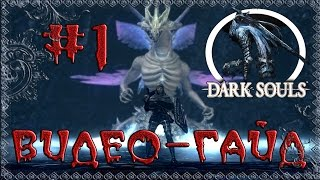 "Видео-гайд по Dark Souls: Prepare to Die edition. #1 ""Крутой старт"""