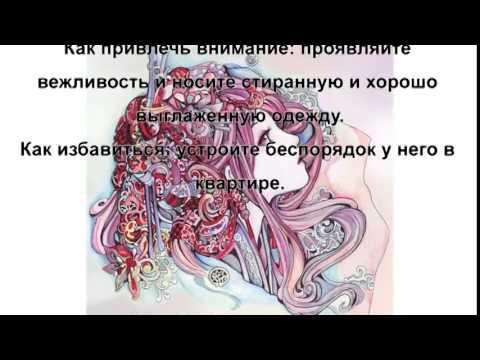 Василиса володина про гороскоп