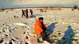 Рыбалка в казнаковке вко на 10 дней