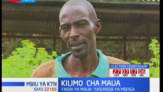 Wabunge wakutana jijini Nairobi kwa warsha ya kufunzwa mwelekeo ya bunge