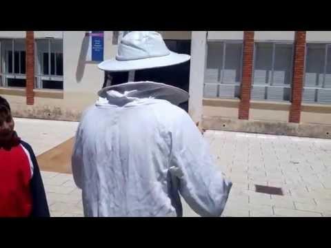 Abejas 5 El traje del apicultor