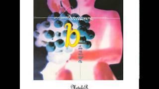 B Tribe – Alegría