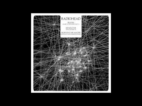 Separator - Anstam Rmx II