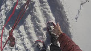 Sun Dog's Vlog: Ridge top snowshoeing with guests is now available! Here's the latest report