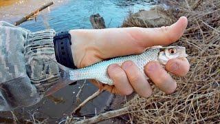 Рыбалка на Поплавок - ловля плотвы на поплавочную удочку (рыбалка видео) - MF №58
