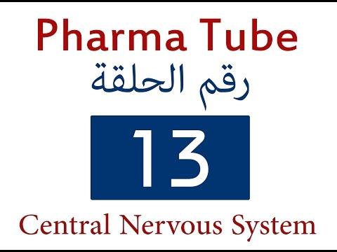 Néphropathie hypertensive