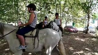 Video del alojamiento Jardines de Viana Spa