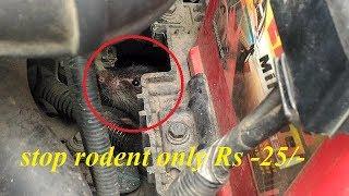 गारी में चूहे आना कैसे रोके || protect your car from rat only RS 25/-