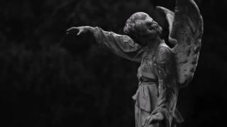 Musik-Video-Miniaturansicht zu Die zehnte Elegie Songtext von Rainer Maria Rilke