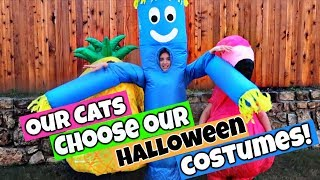 Our Cats Pick Our Costumes Halloween Challenge!!!