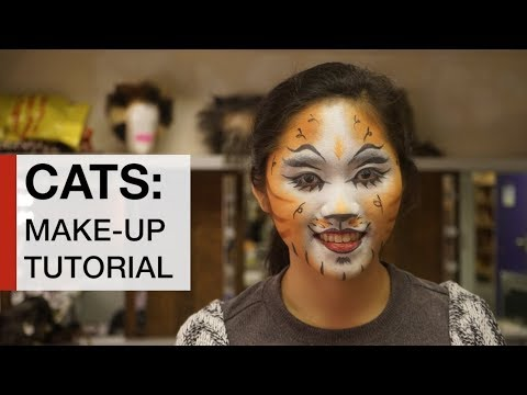CATS make up tutorial - How to look like Jennyanydots from the musical CATS