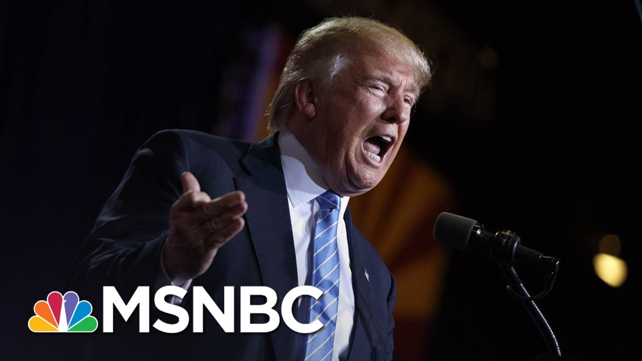 Local Union President Responds To Donald Trump's Tweet Attack | The Last Word | MSNBC thumbnail