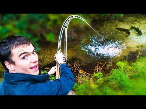 Artsfiskeri - 48 timers artskonkurrence med Carl og Alex