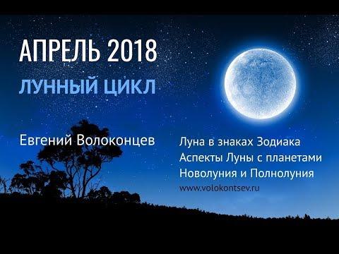 Тамара глоба гороскоп астролога