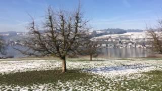 スイス発 中央スイス・キュスナハトから見たピラトゥス山【スイス情報.com】