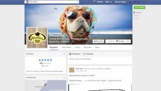 Comienza tu propia historia de éxito con 1&1 Mi Web, como petuchinis.com.mx