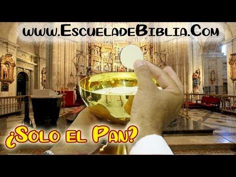 ¿Por qué se da solo el cuerpo y no la Sangre de Cristo en la santa Misa? - P. LUIS TORO