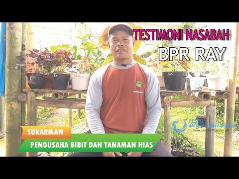 Testimoni Nasabah !!!   Sukarman   PT BPR Restu Artha Yogyakarta   Solusi Keuangan Anda
