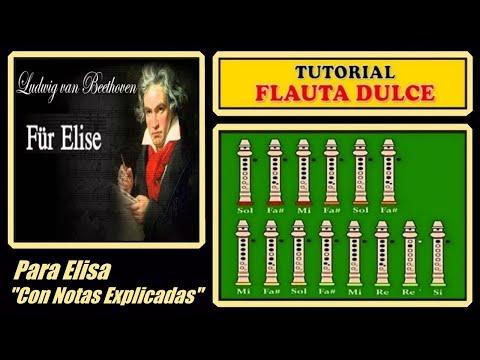 Notas Musicales Para Flauta Y Piano Fur Elise Ludwig Van