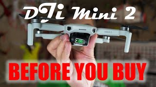 Top Problems with the DJI Mini 2 | Should you buy, or consider an upgrade?