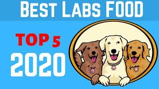 ✅ Best Dog Food For Labs 2020  | Top 5 Best Dog Food For Labrador With Skin Allergies.