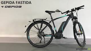 Gepida Fastida speed bike Pro