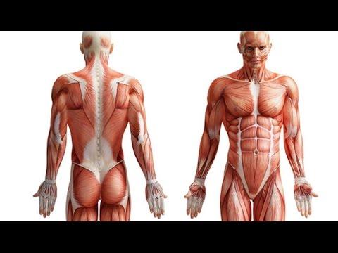 ¿Por crujir todas las articulaciones y la columna vertebral