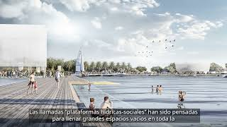 Fluid Buffer in Argentina – Project Video