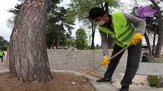 Park ve Bahçeler Müdürlüğüne bağlı ekipler çalışmalarını hızlandırdı