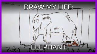 Draw My Life: Elephant Edition